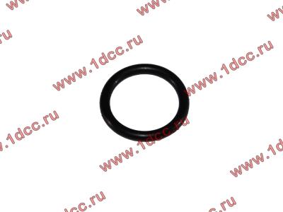 Кольцо уплотнительное форсунки резиновое H2/H3 HOWO (ХОВО) VG609070080 фото 1 Владимир