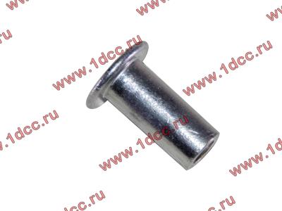Заклепка алюминиевая 10х24 H2/H3 HOWO (ХОВО) 189000340068 AL фото 1 Владимир