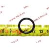 Кольцо уплотнительное форсунки резиновое H2/H3 HOWO (ХОВО) VG609070080 фото 2 Владимир