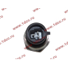 Датчик давления масла H3 HOWO (ХОВО) VG1540090035/1 фото 2 Владимир