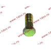 Болт пустотелый М10х1,0 (штуцер топливный) H HOWO (ХОВО) 81500070054 фото 3 Владимир
