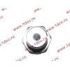 Датчик давления масла H3 HOWO (ХОВО) VG1540090035/1 фото 3 Владимир
